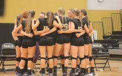 Volleyball Profiles
