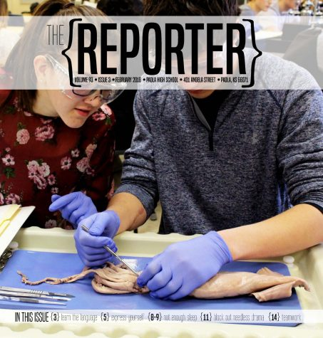 The Reporter- Issue 5 May 2017