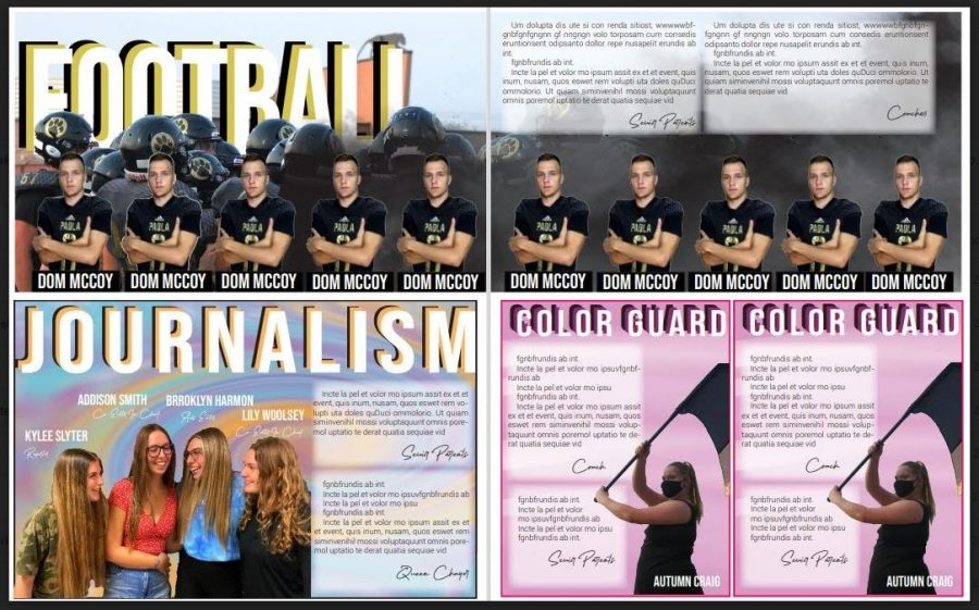 Tribute ads to honor senior athletics and activities